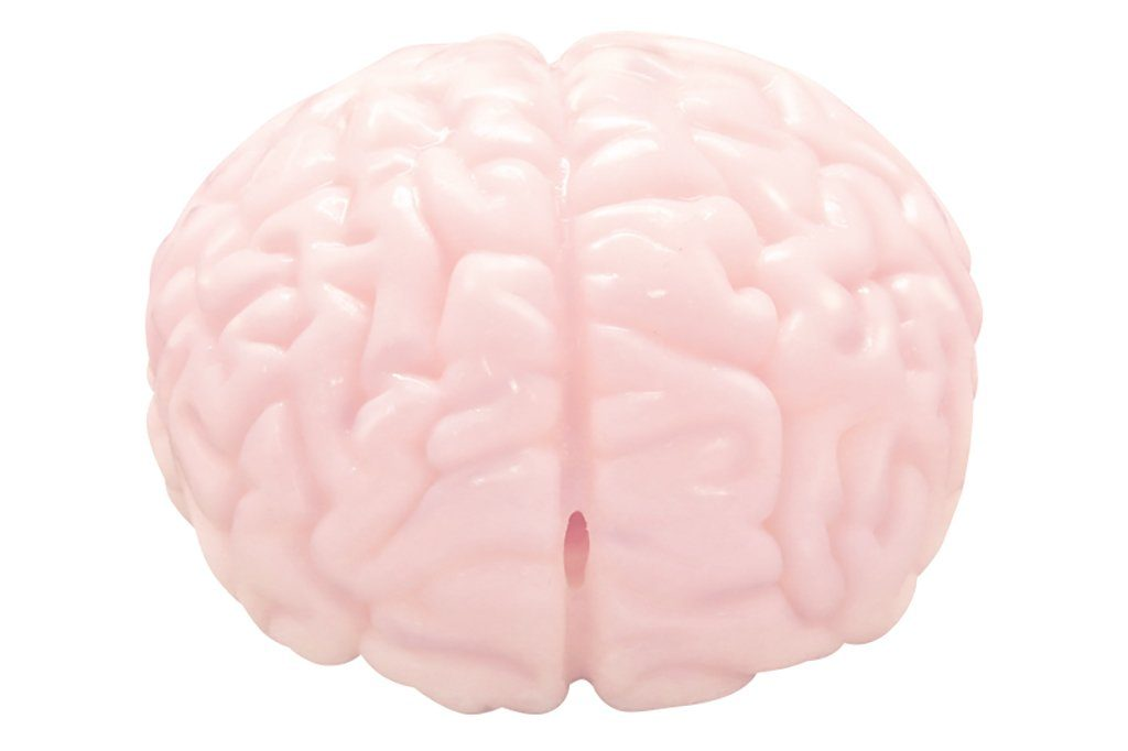 Brain F*cker Sex Toy